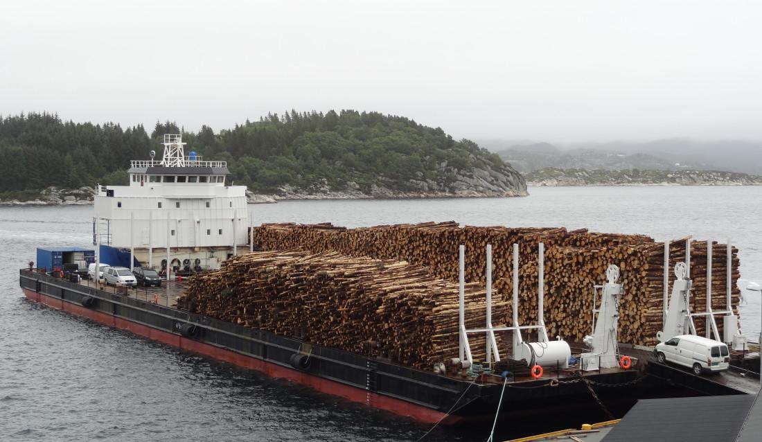 ROMSLIG «Skogplattformen» er 91 meter lang og 27 meter bred, og har plass til mellom 8.000 og 10.000 kubikkmeter tømmer. Det er også 13 sengeplasser ombord. (Foto: Helge Kårstad).