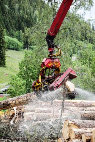 EFFEKTIVT: Kvistaggregatet, Woody 60, håndterer tømmerstokker på opptil 60 cm i diameter lekende lett. (Foto: Runar F. Daler).