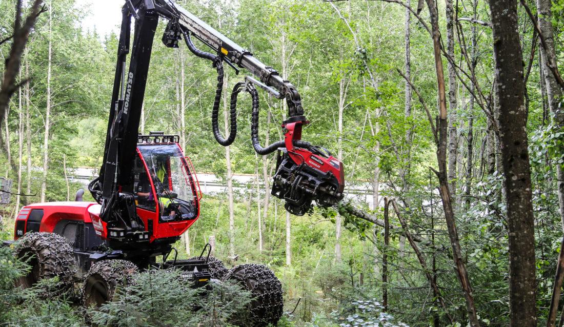 Skogsoperatørlærling Jonas Brobakken rydder skog slik at E6-en (i bakgrunnen) kan utvides. (Foto: Runar F. Daler).