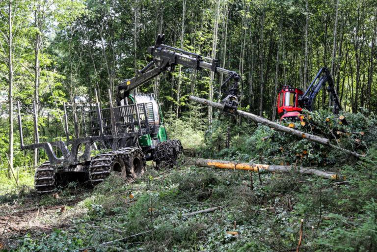 Hogstmaskinen (Komatsu 911) og lassbæreren (John Deere 1210) fjerner skogen i et forrykende tempo. (Foto: Runar F. Daler).
