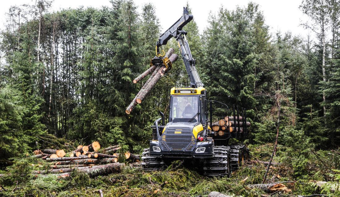 Skogavdelingen i MEF har mange spennende prosjekter på gang. Men de ønsker seg flere medlemmer. (Foto: Runar F. Daler).