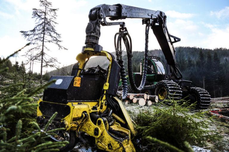 Tveitan & Bang Tynningslag var travelt opptatt med å hogge 1200 kubikk tømmer i området der markeringen fant sted. Bedriften har 17 ansatte og hogger drøye 200 000 kubikk i året. (Foto: Runar F. Daler).