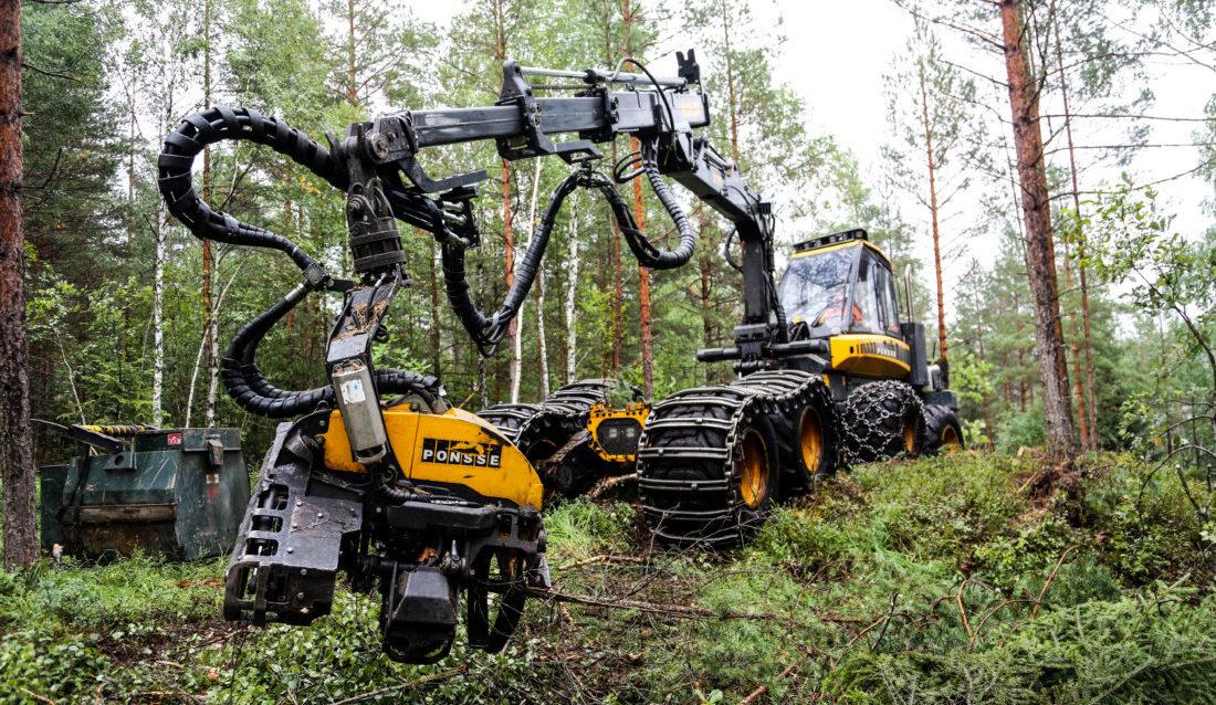 ENDELIG: Først den andre uka i august kunne denne skogsmaskinen (Ponsse Buffalo Dual) tas i bruk igjen etter tre ukers driftsstans grunnet ekstrem tørke og skogbrannfare. (Foto: Runar F. Daler).