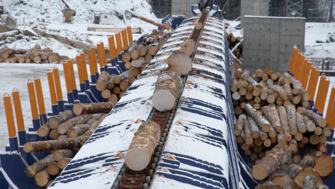 Den nye tømmersorteringslinja hos Moelven Våler er den første i landet med røntgenskanning og 3D-ramme. (Foto: Moelven).